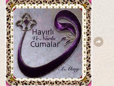 Haci Bayram Camii, Alphen aan den Rijn
