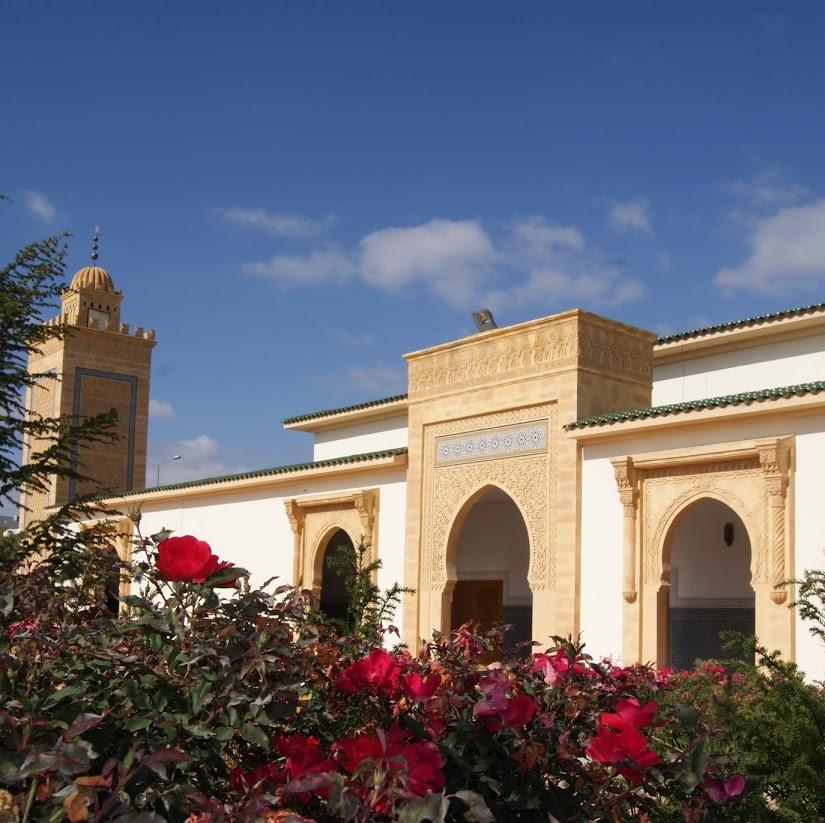 Grande Mosquée Mohammed VI de Saint-Etienne, Saint-etienne, France